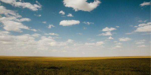 Prairie Call