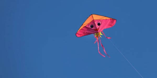 The Kite that Wouldn't Fly